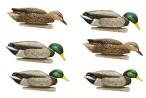 (8070) Кряква Avian-X TOPFLIGHT BACK WATER Mallards. Комплект полноразмерных кормящихся чучел кряквы для высадки на закрытые водоемы (6 шт.)