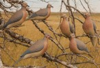 72005 Greenhead Gear Mourning Doves 1/2 Dozen Decoy муляж горлицы на прищепке в натуральную величину