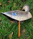 Кряква IM-02 Sport Plast полевое чучело на стойке со съемной головой